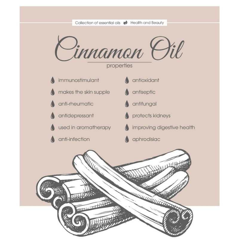 Aroma Scents Naturals - Cinnamon Essential Oil Uses, Benefits and Cautions