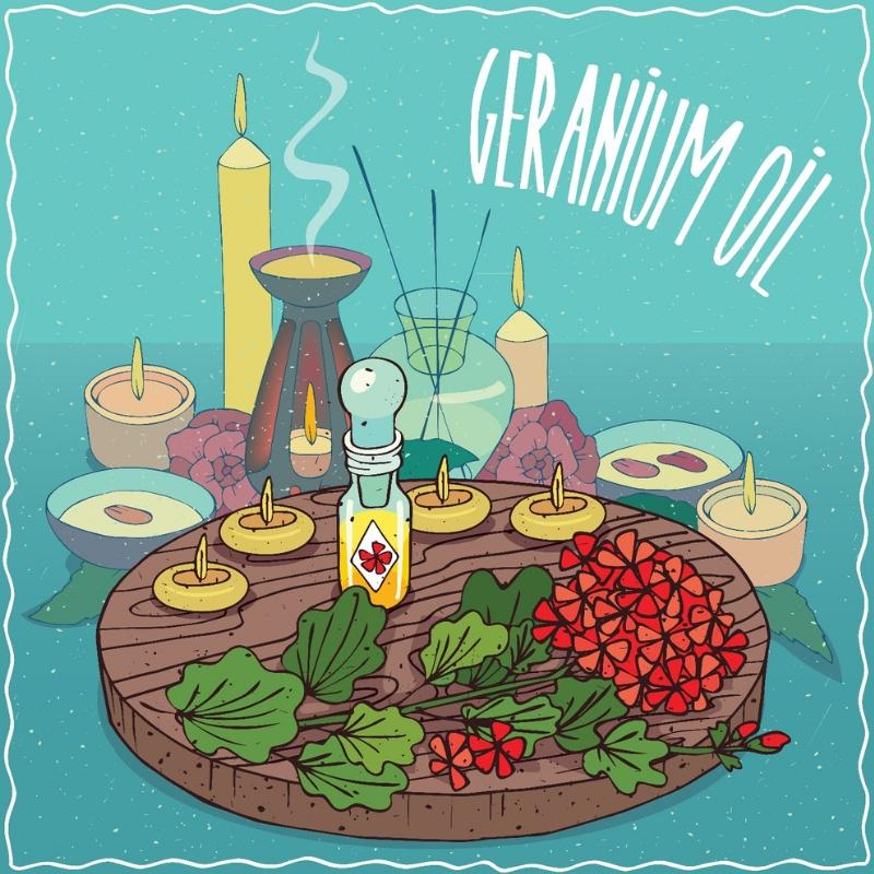 Aroma Scents Naturals - Geranium Oil Uses